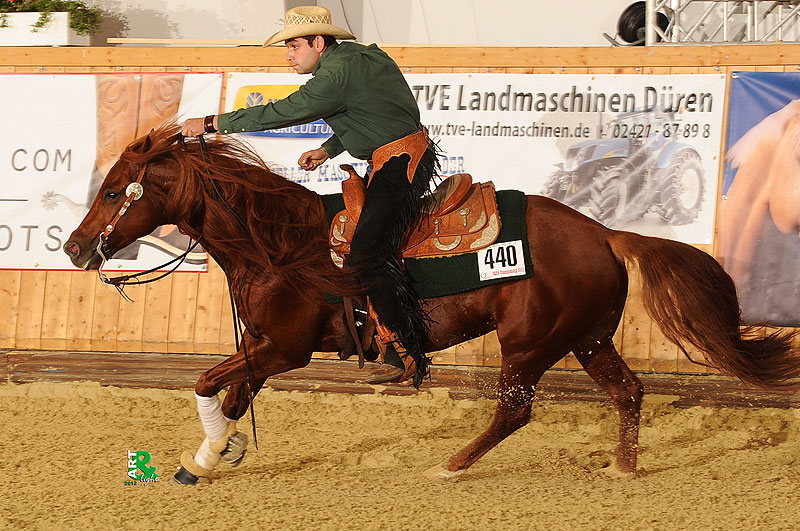 deutsche quarter horse association