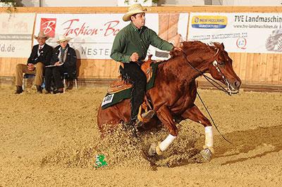 deutsche quarter horse03 1